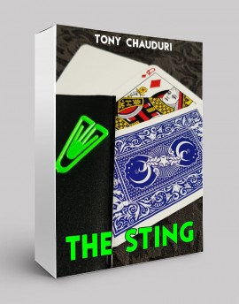THE STING - Sam Sebastian Magic Factory